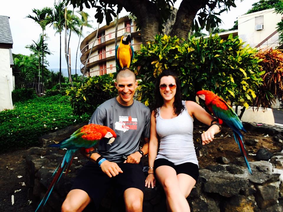 Parrots Kona